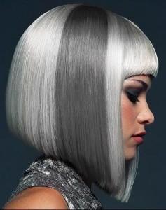 Silver-Hair-9
